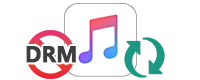 Conseils sur Apple Muisc DRM suppression